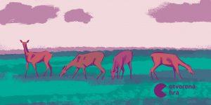 Ako sú motivované srnky a čo to má spoločné s korporátmi?